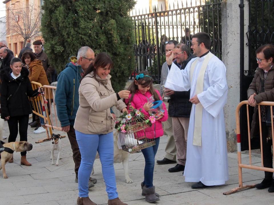 Villacañas celebró ayer la festividad de San Antón