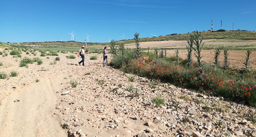 En los próximos días se iniciará la construcción de la balsa para reducir las avenidas de agua