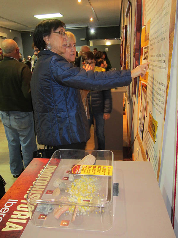 Arrancan las Jornadas de Investigación Histórica Local con la presentación de Arqueovillacañas