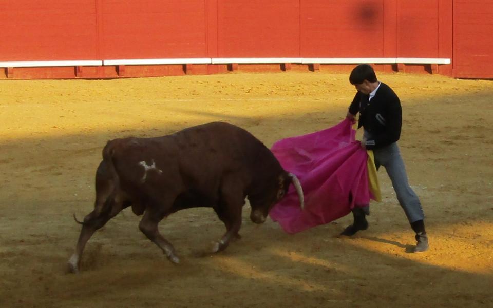 Éxito de diestros y toros en el Festival Taurino de Villacañas